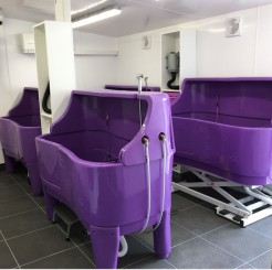 The bathing area at our Dog Grooming Training School in Leftwich, Cheshire