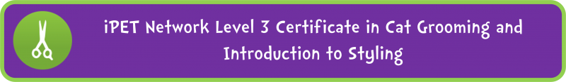 iPET Network Level 3 Certificate in Cat Grooming and Introduction to Styling