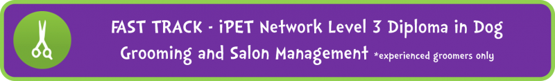 AST TRACK - iPET Network Level 3 Diploma in Dog Grooming and Salon Management