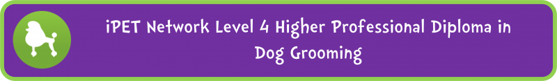 Level 4 Higher Professional Diploma in Dog Grooming