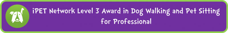 iPET Network Level 3 Award in Dog Walking and Pet Sitting for Professional