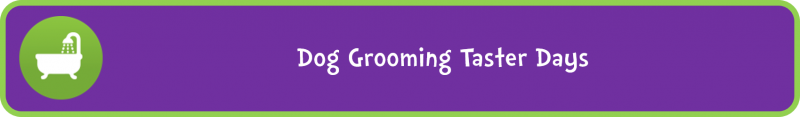 Dog Grooming Taster Days