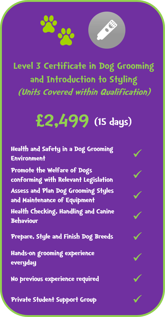Level 3 Certificate in Dog Grooming and Introduction to Styling