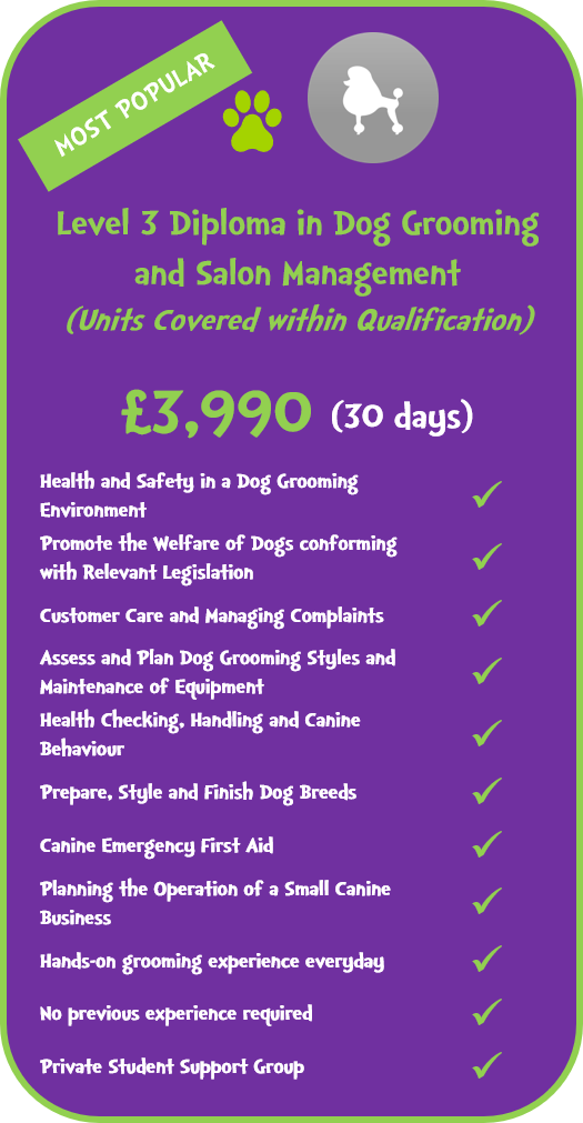 Level 3 Diploma in Dog Grooming and Salon Management