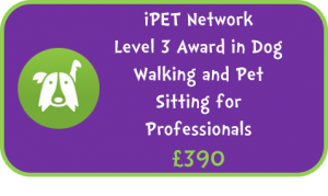 iPET Network Level 3 Award in Dog Walking and Pet Sitting for Professionals